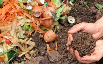 Органические отходы станут удобрениями и биогазом