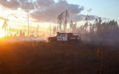 Из-за сибирских пожаров в атмосферу попало 970 мегатонн углерода